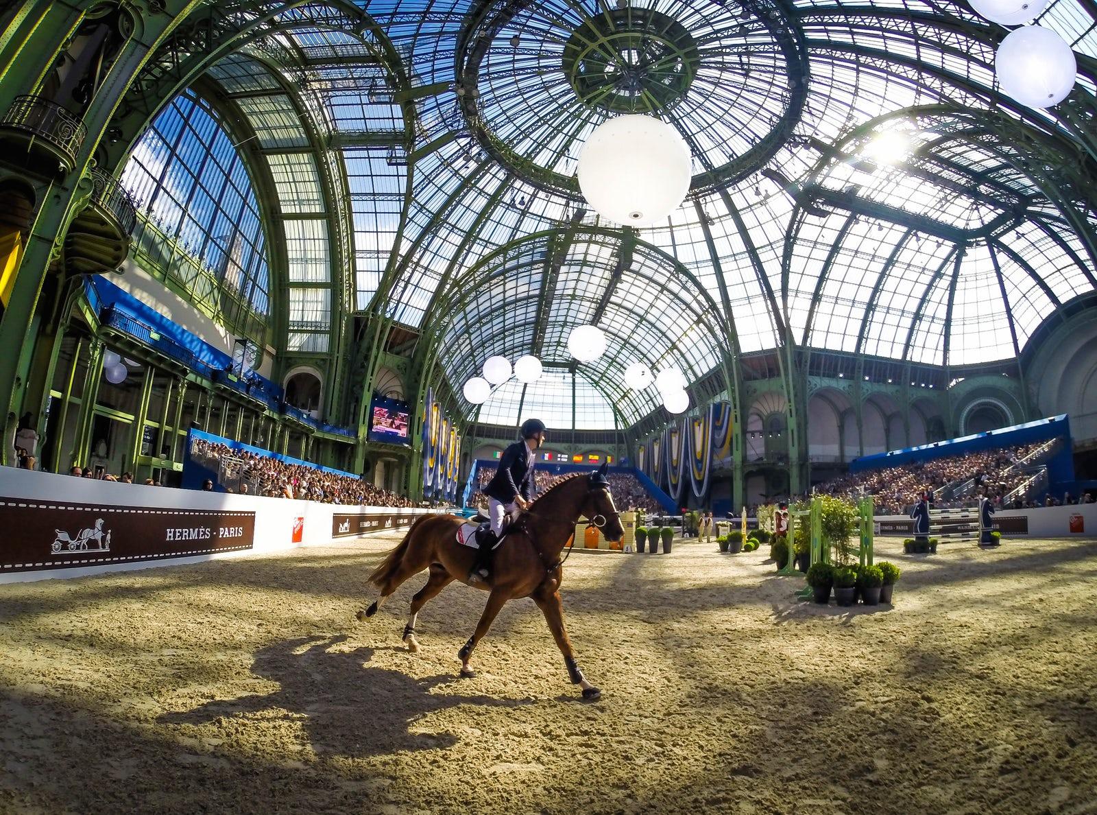 Saut Hermès at The Grand Palais  Bertram Allen rides Romanov during the Grand Prix Hermès CSI5, April 12th, 2015 in Paris, France